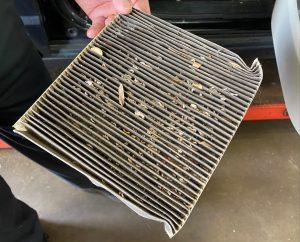 Dirty cabin air filter